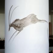 Aquaglyphe 05