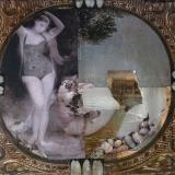 Venus aus Nautilus, 2012, 40 x 40 cm, Collage, Malerei auf Leinwand