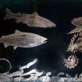 Der alte Bach, 2012, 50 x 70 cm