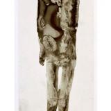 Goldkind, 2015, 50 x 18 cm, Zeichnung mit Tusche auf Folie