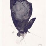 Falter, 1997, 30 x 20 cm, Tusche auf Transparentfolie