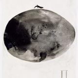 5 Durabo 1998 Tusche auf Transparentfolie 50 x 40 cm